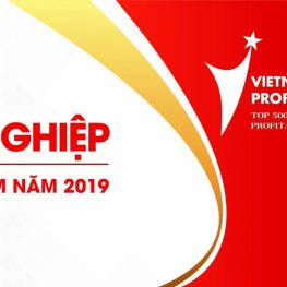 Ngoc Diep Group continues to reach the top of Profit500 Vietnam in 2019