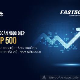 Tập đoàn Ngọc Diệp lọt Top 500 doanh nghiệp tăng trưởng nhanh nhất Việt Nam năm 2021