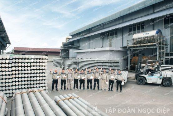 What makes Dinostar Aluminum Billet popular in domestic and international markets?